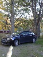 2014 Corolla for sale by TOYOTA Junkie