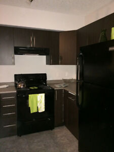 3 bedroom in new building - Close to Downtown, NAIT, Grant Mac