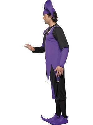 Mittelalterlicher Hofnarr Kostüm, Mittelalterlich, Brust 96.5cm-102cm, Herren