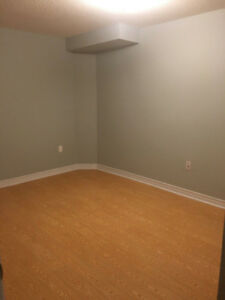 Stylish 2BR Basement in Richmond Hill