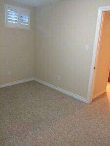 2 bedroom basement apartment all inclusive  Cambridge Kitchener Area image 5
