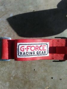 5 Point Race Harness