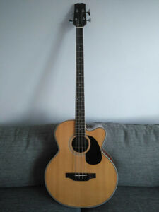 Acoustic-Electric Bass Guitar (BeaverCreek )