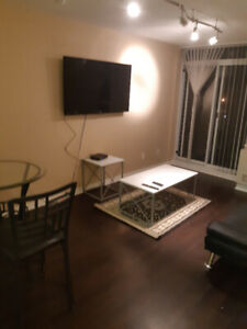 Fully FURNISHED 1-bedroom condo, YONGE/SHEPPARD, SHORT/LONG TERM