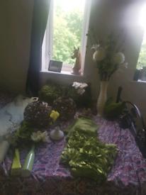 Green household bundle
