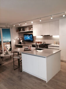 AVAILABLE NOW OR FEB 1 : BRAND NEW 1 BEDROOM 1 BATH OPEN LAYOUT.