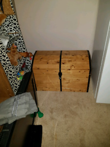 Great Christmas gift Toy box or chest