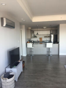 1BR in 2BR Apartment $750.00 May 1