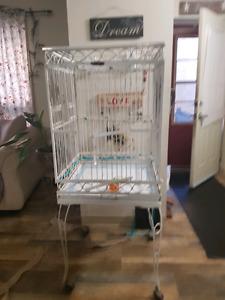 Bird cage antique
