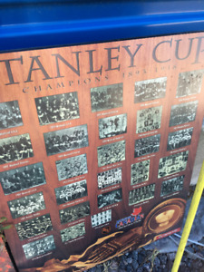 Stanley Cup Champions Poster Plaques