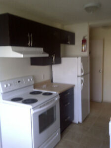1 Bdr fully renovated unit in AB Apartment