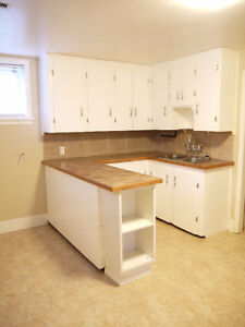Mountview-Near Edmonton Tr-NEWLY RENO'D Gorgeous 1-BR Bsmt-Fines