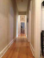 Beautiful 2 Bedroom apt Downtown, Available April 1st or earlier