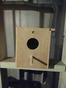 Parakeet Nesting Box