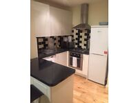 Luxury and spacious one bedroom flat to rent