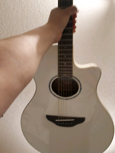 Electric acoustic