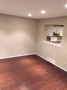 Silverspring 3 bedrooms townhouse for rent ( close to amenities)