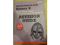 Edexcel History B Revision Guide