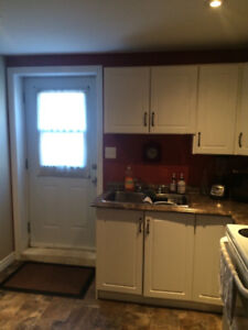 1 Bedroom Basement suite, Southlands area. Available Immediately
