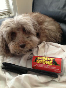 PET HAIR STONE REMOVAL FOR CARS