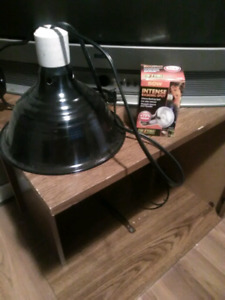 Heat lamp for terrarium with new bulb