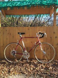 WANTED Vintage Road Bikes