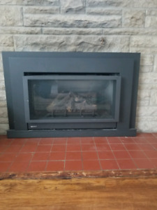 Regency U31 Gas fireplace insert