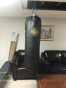 100LB Everlast Punching Bag With Mount!