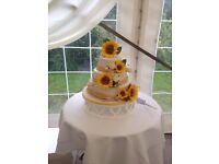 Wedding Cakes £250 depending on design