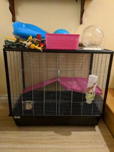 Cage pour rongeurs Savic Zeno 2 et accessoires