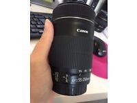 Canon 55-250mm IS STM Lens DSLR