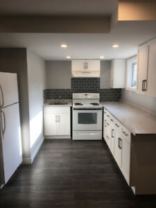 Newly Renovated 1 Bedroom + Den Lower Apartment
