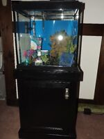 27 gallon cube fish tank with stand