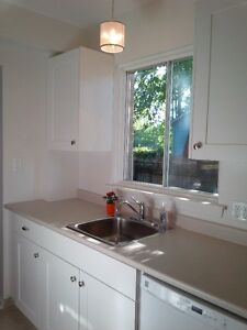Beautifully updated 3 bedroom HOUSE for rent in Sarnia Sarnia Sarnia Area image 4