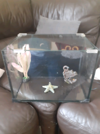 For sale a cold water fish tank in Good condition