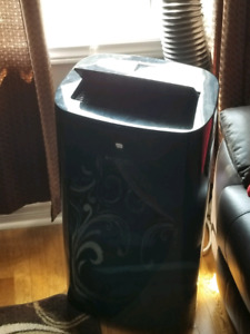 Portable air conditioner and heater