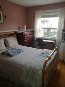 Bright Furnished Room in St Clair West/Dufferin - Female only