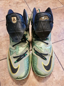 Size 11  Nike Lebron James Basketball Sneakers