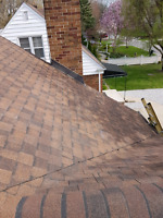 RESIDENTIAL ROOFING 5198177663