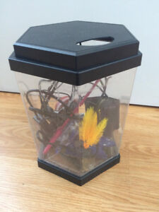 Fish Tank & Free Supplies!