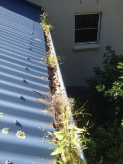 Jacobs gutter cleaning Beecroft Hornsby Area Preview