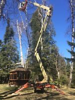 TREE Removal MADE EASY!!.. w/ The Best Equip. In Town!