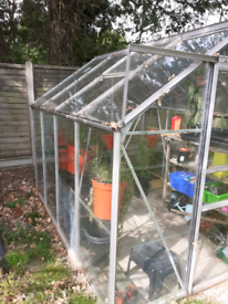 GREEN HOUSE GLASS PANES AND PANELS (£5 EACH) OR WHOLE GREENHOUSE £50