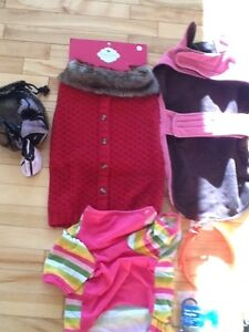 Dog outfits and leashes booties etc