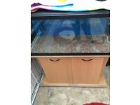 180 litre fish tank on stand with external filter