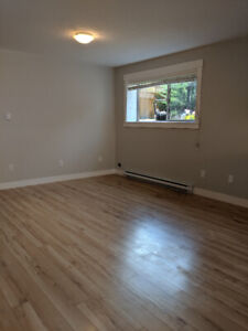 Newer 2 Bedroom basement suite Chase River area