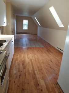 2 BEDROOM DOWNTOWN ALL INCLUDED