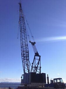 Have we Got A Crane for YOU