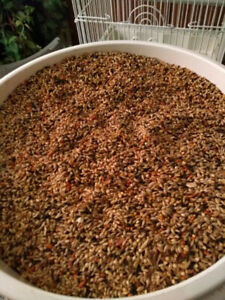 QUALITY CAGE BIRD FEED  FOR FINCH , BUDGIE, CANARY.