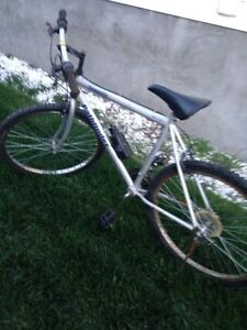 Kids and mans bikes .... 40 dollars a bike .. Free delivery ..